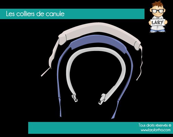 Les colliers de canules